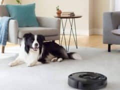 Best Quietest Robot Vacuum Cleaner