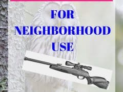 most quiet air rifle for neighborhood use